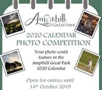 2020 Calendar Photo Competition